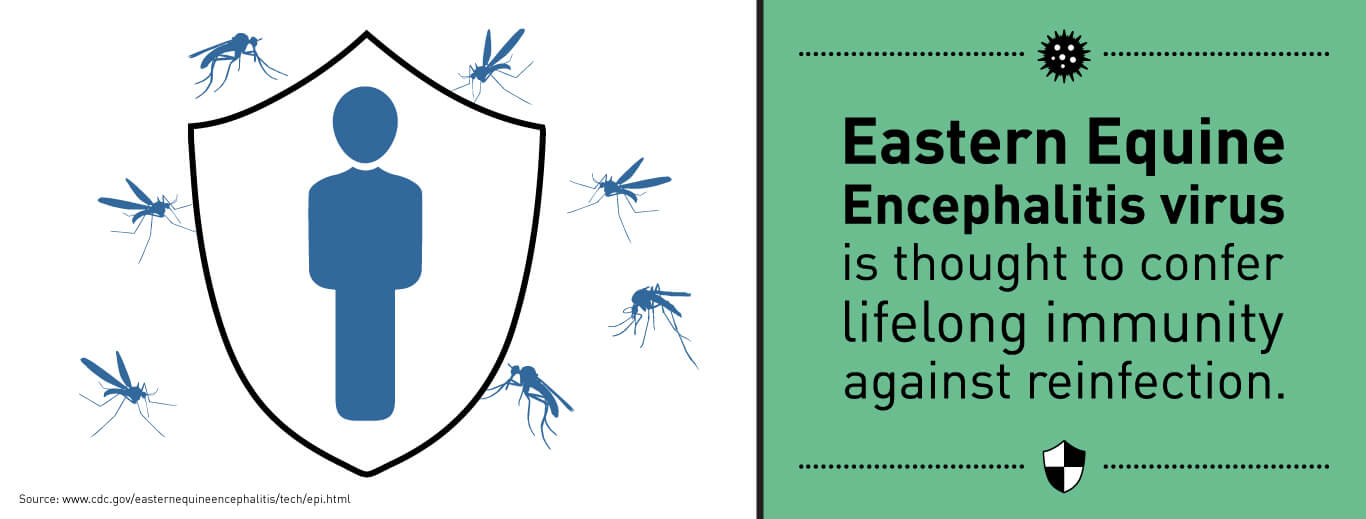 Eastern Equine Encephalitis Virus is thought to confer lifelong immunity against reinfection.